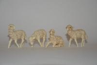 Gruppo 4 pecore